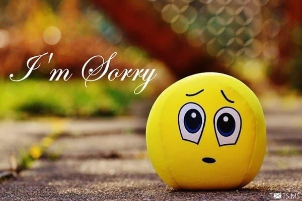 sorry image 7